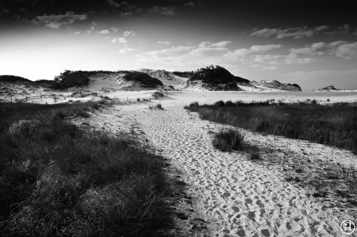 Destin, FL sand dunes at sunrise